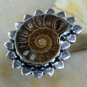 Fs 1028a bague t59 fossile ammonite achat vente pierre naturelle collection prehistoire
