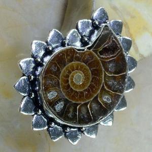 Fs 1028b bague t59 fossile ammonite achat vente pierre naturelle collection prehistoire